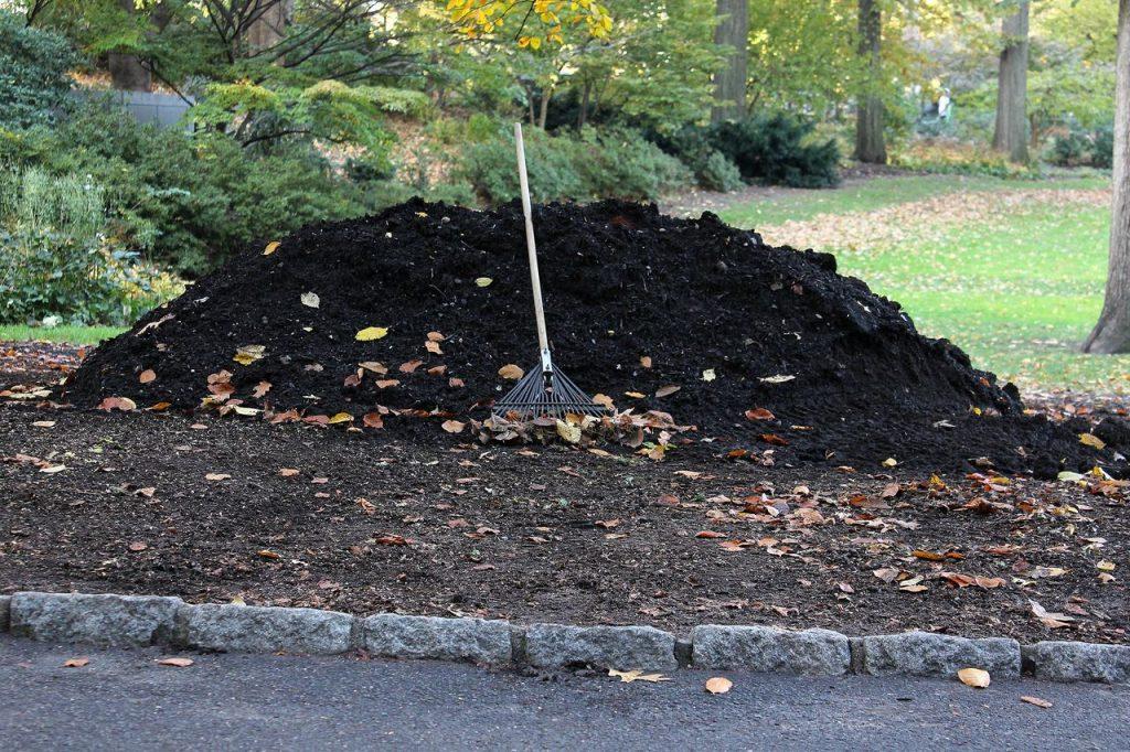 compost pour le jardinage